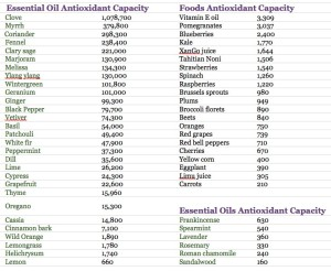 antioxidant capacity - hřebíček