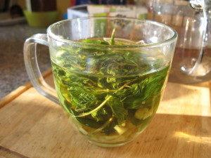 Přírodní léčba - čaj na bolest hlavy