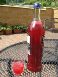 ovocná šťáva s vodkou 2